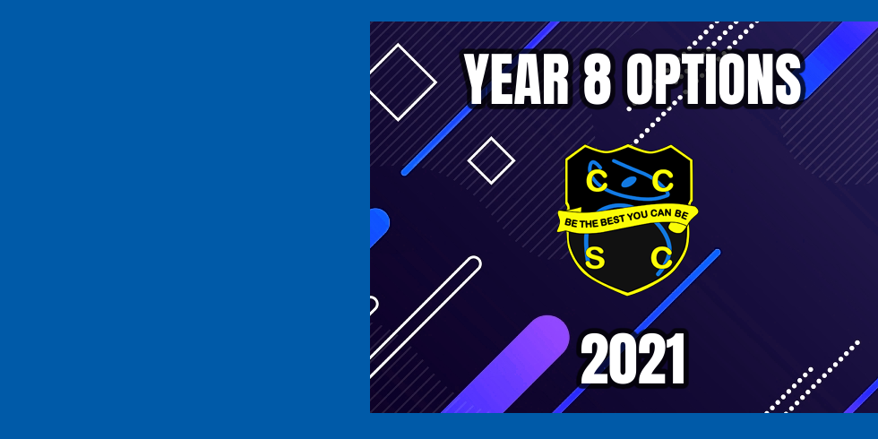 Download our Year 8 Options Booklet Here!